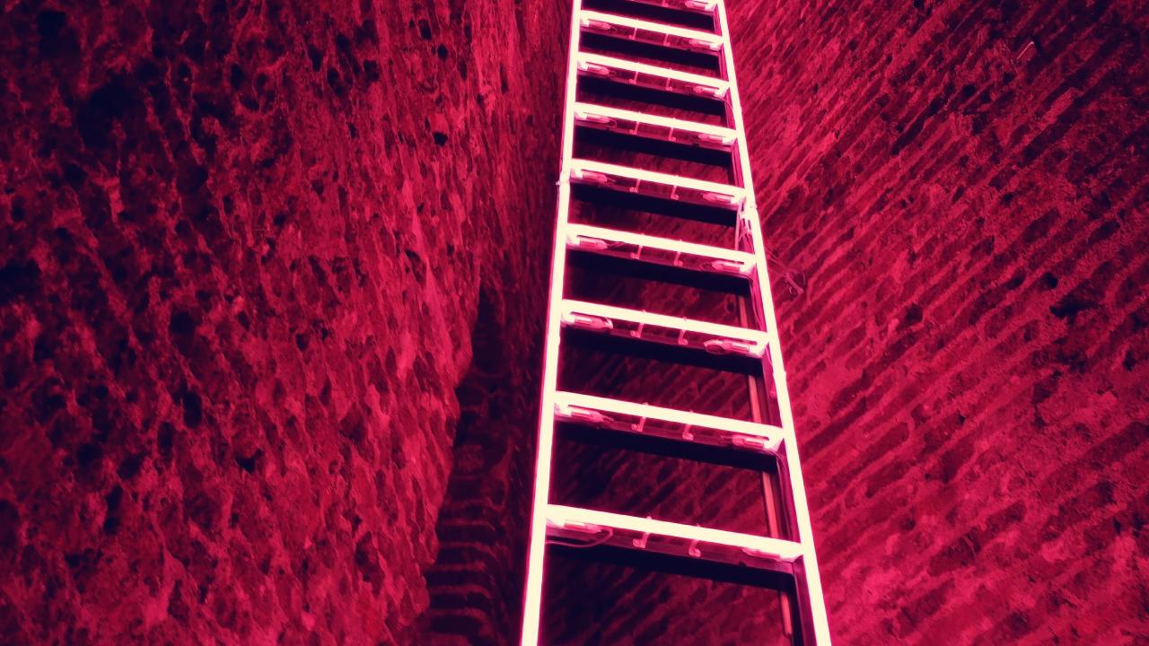 ladder-bigger-brother